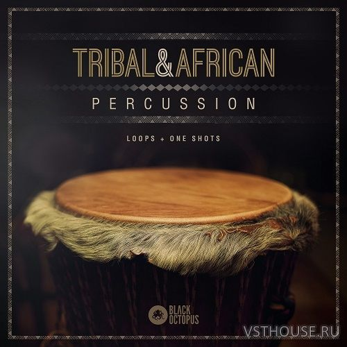 Black Octopus Sound - Tribal & African Percussion (WAV)