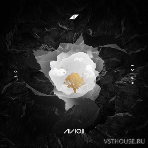 Avicii – Without You feat. Sandro Cavazza (Remix Stems)