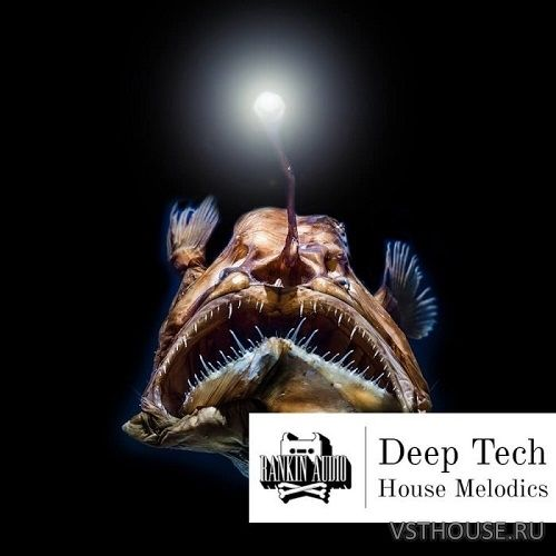 Rankin Audio - Deep Tech House Melodics (MIDI, WAV)
