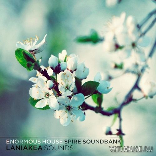 Laniakea Sounds - Enormous House Spire Soundbank (SYNTH PRESET)