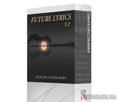 Magnetic Music - Future Lyrics 2 (WAV)