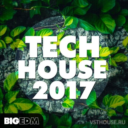 Big EDM - Tech House 2017 (WAV, MIDI, SERUM)