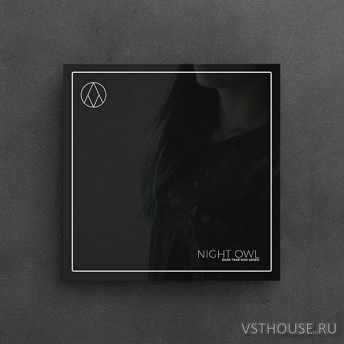 AngelicVibes - NIGHT OWL – LOOP PACK (WAV)
