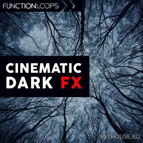 Function Loops - Cinematic Dark FX (WAV)