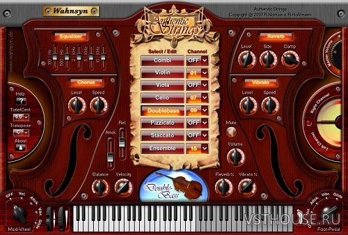 Wahnsyn - Authentic Strings VSTi v1.0 x86 NO INSTALL