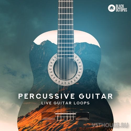 Black Octopus Sound - Percussive Guitar (WAV)