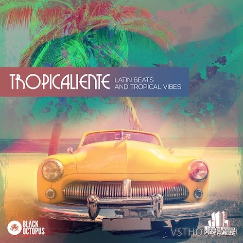 Black Octopus Sound - Tropicaliente by Basement Freaks (MIDI, WAV)
