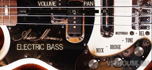 Adam Monroe Music - Adam Monroe's Electric Bass 1.2 VSTi, AAX, AUi