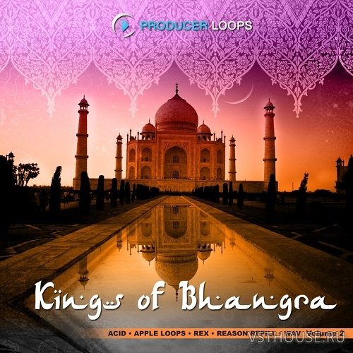 Producer Loops - Kings of bhangra Vol.2 (AIFF, REX2)
