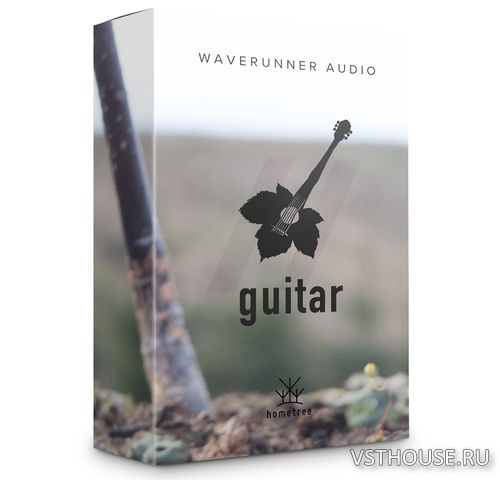 WaveRunner Audio - Johns Guitar (KONTAKT)