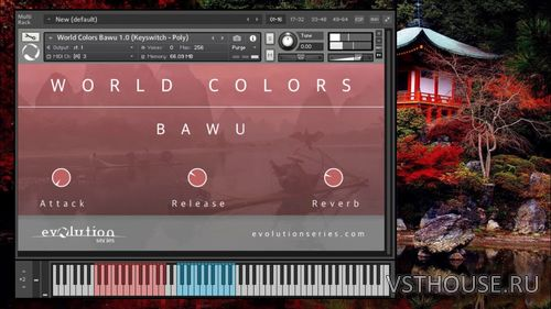 Evolution Series - World Colors Bawu (KONTAKT)