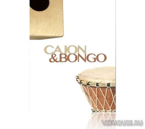 8dio cajon and bongo